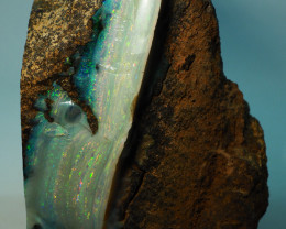 3445CT WINTON MAGIC SPECIMENT BOULDER OPAL AL239