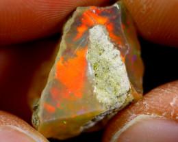 10cts Ethiopian Welo Rough Opal / WR1758