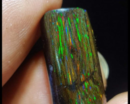 9.25 CT Gorgeous Indonesia Wood Fossil Opal Polished