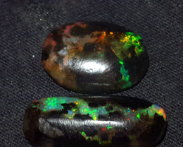 9.00 CRT POLISHED INDONESIAN OPAL WOOD FOSSIL