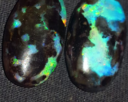 15.00 CRT POLISHED INDONESIAN OPAL WOOD FOSSIL