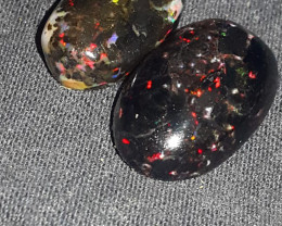 13.00 CRT 2PCS RAINBOW PIN FIRE POLISHED INDONESIAN OPAL WOOD FOSSIL