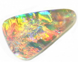 1.30CT COOBER PEDY SHELL FOSSIL OPAL STONE [CS244]
