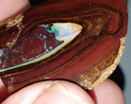 235 Ct Yowah Nut Opal Specimen from Yowah