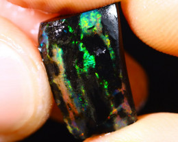 6cts Indonesian Wood Opal Rough / HM19
