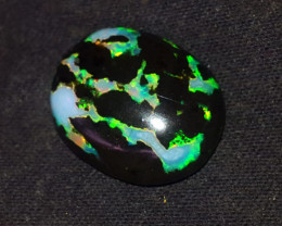13.00 CRT GORGEUS FLORAL PATTERN COLOR INDONESIAN OPAL WOOD FOSSIL