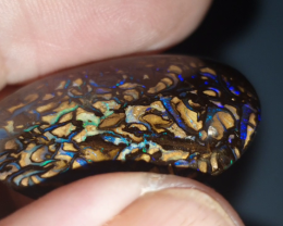 43 Ct Boulder Opal from Yowah