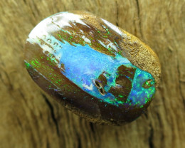 9.5cts. $1nr; QUEENSLAND BOULDER PIPE OPAL.