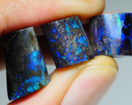 24.390CRT BRILLIANT BRIGHT 3 PCS WOOD FOSSIL OPAL