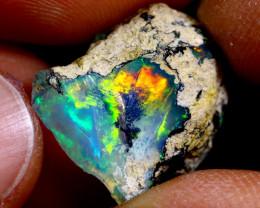 7cts Ethiopian Welo Rough Opal / WR2193