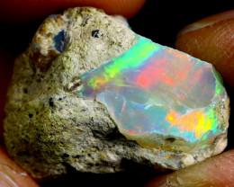 14cts Ethiopian Welo Rough Opal / WR2243
