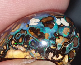 30.6 Ct Yowah nut Opal from Yowah