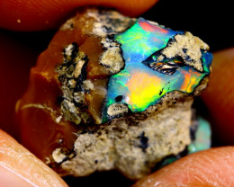 11cts Ethiopian Welo Rough Opal / WR2285