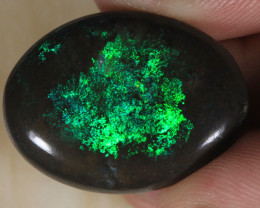 NO RESERVE!! GREENDAY   Matrix opal [27557] 53FROGS
