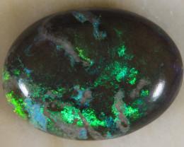 NO RESERVE!!  GREENDAY  Andamooka Matrix opal [27558] 53FROGS