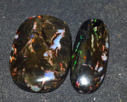 26.00 CRT WONDERFULL PLAY COLOR SPECIMENT INDONESIAN OPAL WOOD FOSSIL
