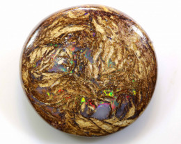 16.2 CTS BOULDER WOOD FOSSIL OPAL STONES   NC-4829