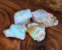 Welo Rough 24.48Ct Natural Ethiopian Gamble Rough Opal Cab Specimen E3102