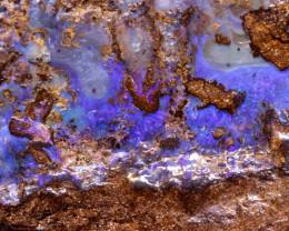 Australian Boulder Opal Specimen DO-15