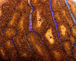 157cts Australian Boulder Opal Specimen DO-18