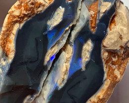 Blue on Black Opal Split - Collectors Grade