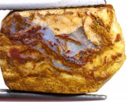 9.55 cts Jundah Boulder Opal Opalized Petrified WOOD DT-A2600