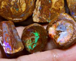 97.75 cts Jundah Boulder Opal Opalized Petrified WOOD PARCEL DT-A2639