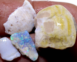 36.50 CTS    CLAM SHELL OPALISED FOSSIL  PARCEL FO-1105
