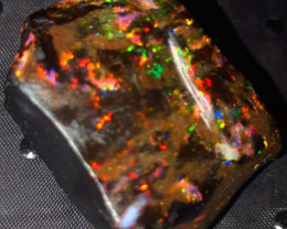91.40 CRT RARE RAINBOW PIN FIRE SPECIMENT INDONESIAN OPAL WOOD FOSSIL*