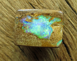 8cts. QUEENSLAND PIPE OPAL GEM.