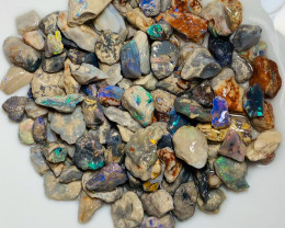 Potential Rough Nobby Opals with Colours & Nice Pieces to Cut