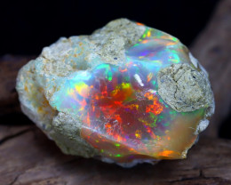 Welo Rough 39.35Ct Natural Ethiopian Play Of Color Rough Opal D1603