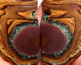 497.00  Cts Polished Yowah Opal Split CH451