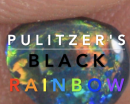 NO RESERVE!! Pulitzer's Black Rainbow- SOLID  [28404] 53FROGS