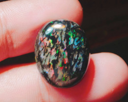 13.20 ct Extreme colour WOOD FOSSIL  INDONESIAN OPAL #