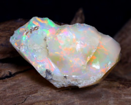13.63Ct Bright Color Natural Ethiopian Welo Opal Rough DT0103