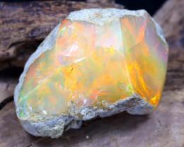 14.66Ct Bright Color Natural Ethiopian Welo Opal Rough DT0161