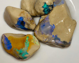 Bright Big Potential Rough Nobby Opals to Explore