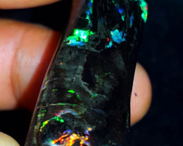 53.00 CRT BEAUTY PLAY COLOR  SPECIMENT INDONESIAN OPAL WOOD FOSSIL