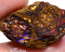 22.80cts Australian Yowah Opal Nut Rough  DO-502