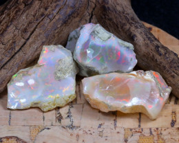 41.38Ct Bright Color Natural Ethiopian Welo Opal Rough DT0249
