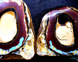2635 CTS YOWAH OPAL  NUT POLISHED SPLIT COLLECTOR INV-1814