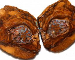 349.60 CTS KORIOT OPAL NUTS  SLICED OPEN 'FIREY COMET'4 [PS272]