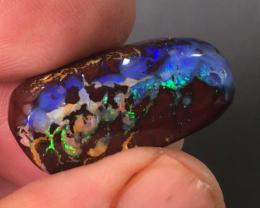 Gemmy Yowah nut Opal from Yowah
