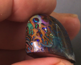 Gemmy Yowah nut Opal from Yowah