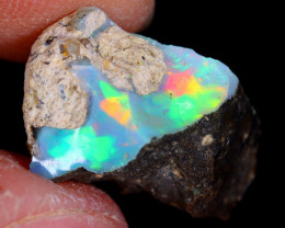4cts Natural Ethiopian Welo Rough Opal / WR4422