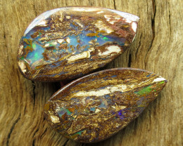 30cts, WOOD OPAL~FOSSIL PAIR.