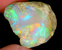 16cts Natural Ethiopian Welo Rough Opal / WR4501