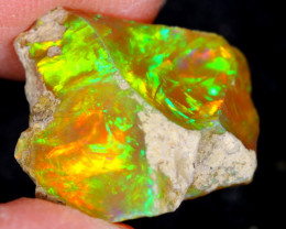 7cts Natural Ethiopian Welo Rough Opal / WR4553