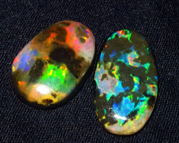 8.50 CRT 2 PCS AMAZING BEAUTY PLAY COLOR SPECIMENT INDONESIAN OPAL WOOD FOS
